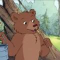 O Pequeno Urso grande